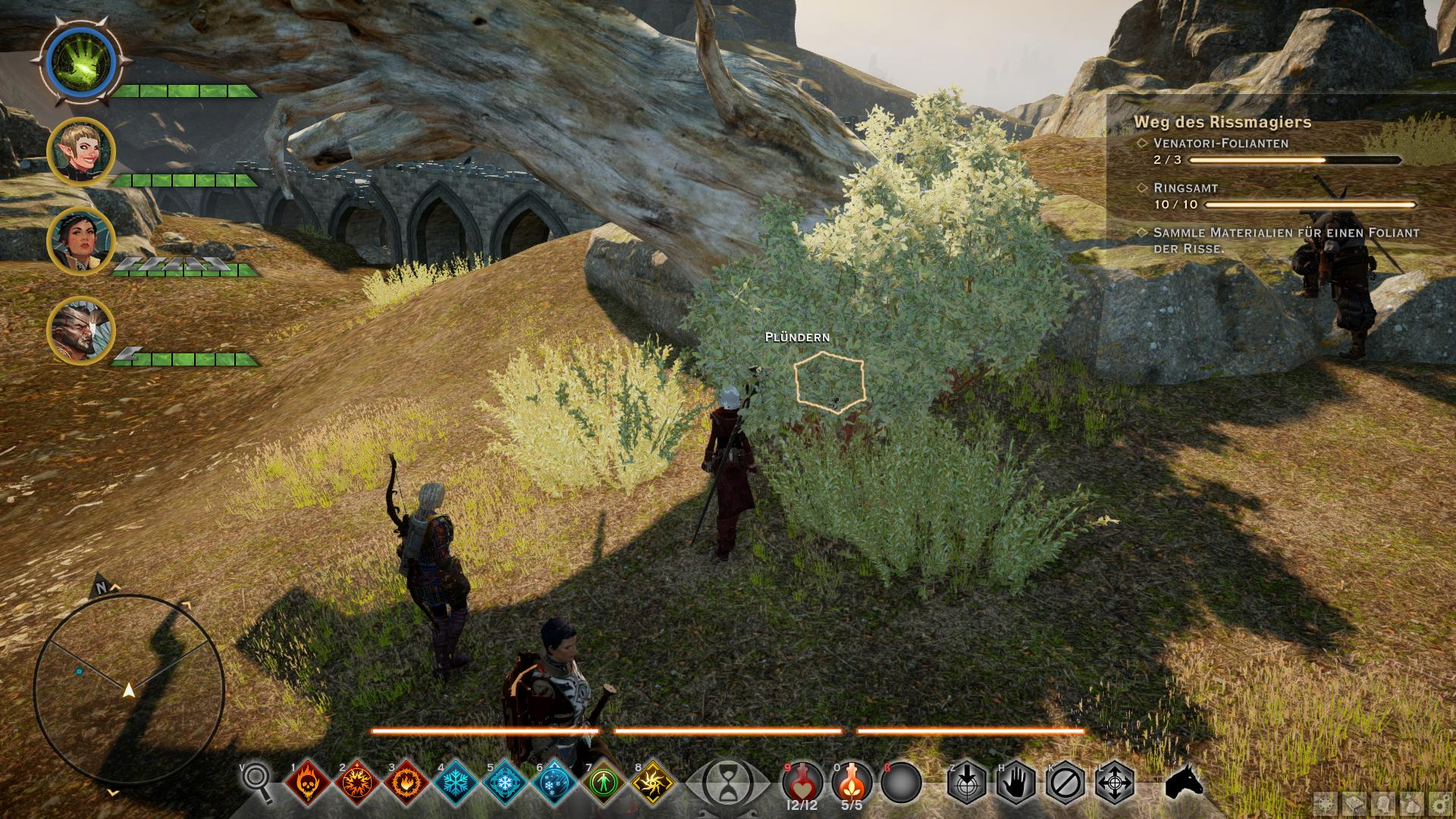 Dragon Age Wertgegenstände
