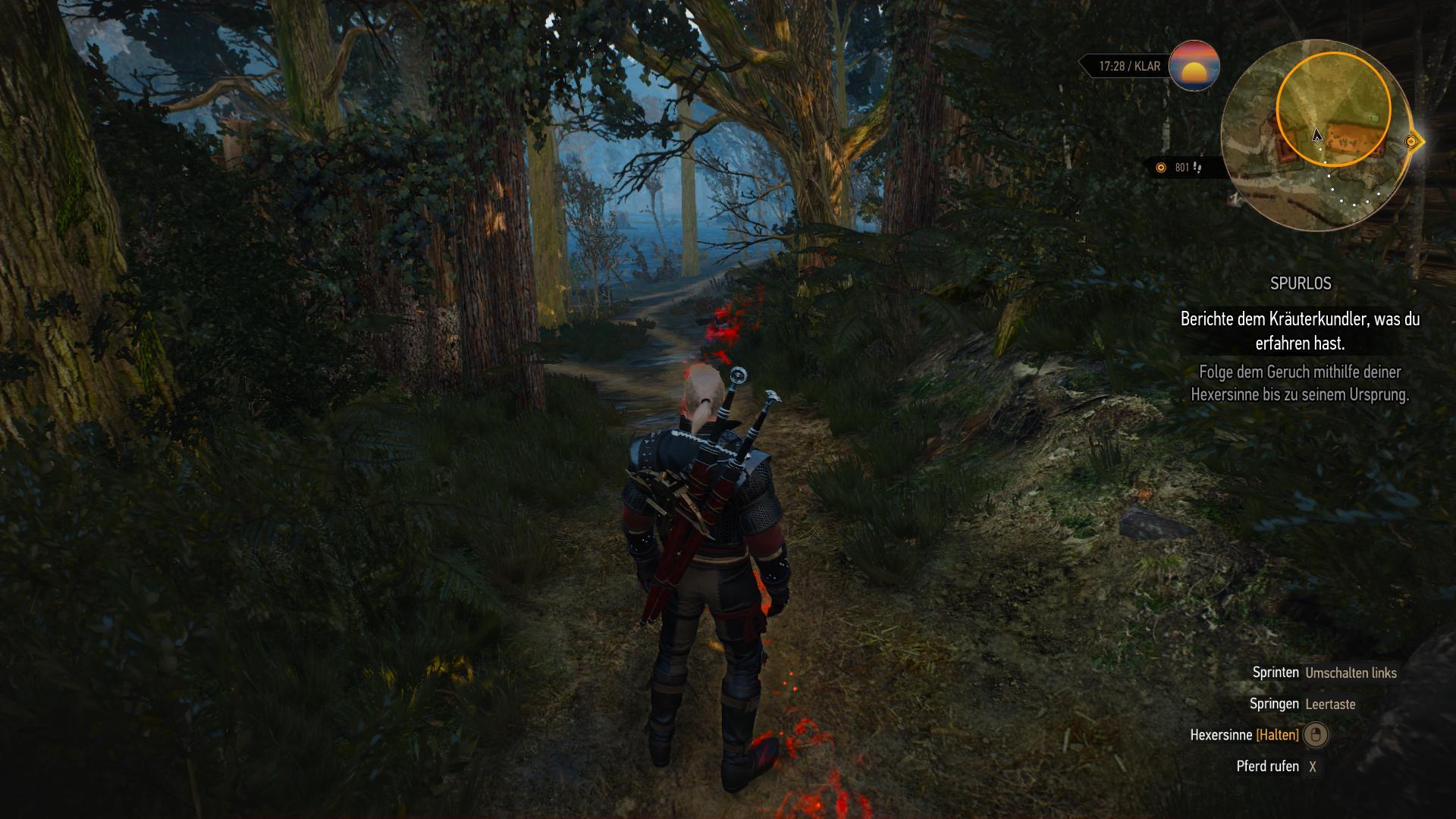 Witcher spurlos