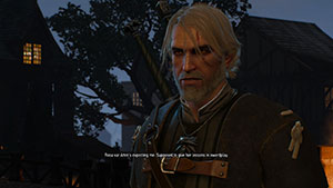 Witcher  Weg In Die Villa