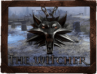 The Witcher Bild